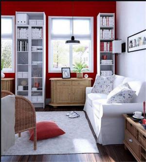 田园小清新客厅书柜墙