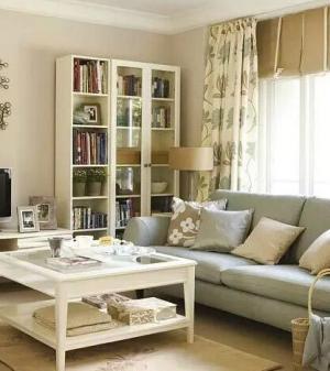 小户型客厅书柜家具定制