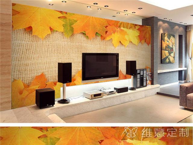 唯美欧式电视背景墙