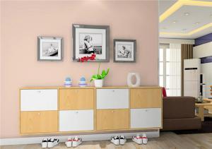 时尚小型鞋柜图片
