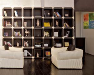 现代简约客厅书柜