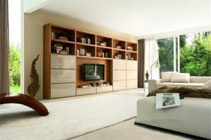 北欧电视书柜一体效果图