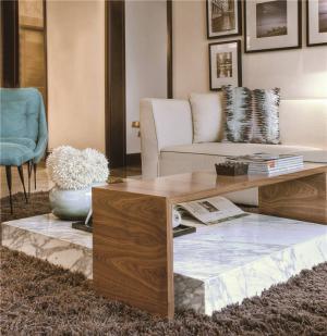 现代客厅沙发组合图片