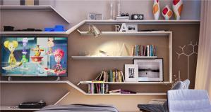 客厅家具书柜