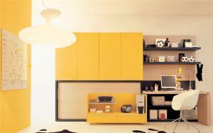 现代活力组合书柜