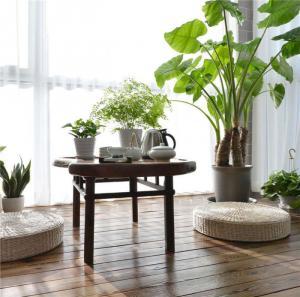 绿植摆放小阳台装修效果图